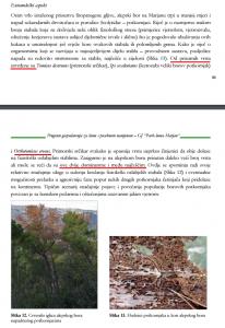 Potkornjak PG3 str. 81